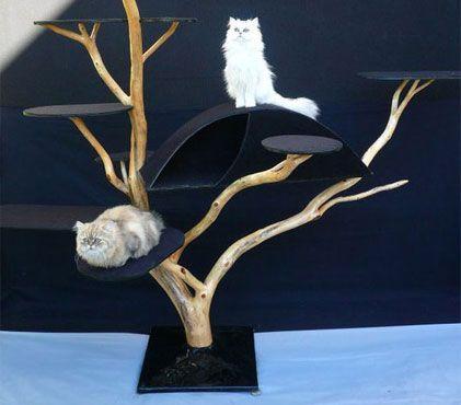 arbres chat extraordinaires. Black Bedroom Furniture Sets. Home Design Ideas