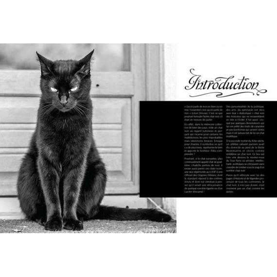 livre_chat_noir
